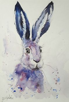 I made this painting on top quality Saunders Waterford Paper x 300 gsm. Supplied with a signed certificate of provenance Watercolor Bird, Watercolor Animals, Watercolor Paintings, Original Paintings, Watercolour Drawings, Watercolour Illustration, Animal Paintings, Animal Drawings, Art Drawings