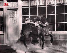 Edmond O'Brien Wild Bunch | Inicio » Catálogo » PHOTO » 121715 THE WILD BUNCH