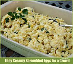 Easy Creamy Scrambled Eggs for a Crowd....