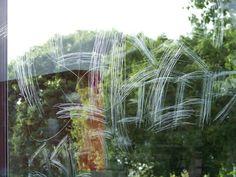 Window Films, Graffiti, Solar, Windows, Plants, Plant, Graffiti Artwork, Ramen, Planets