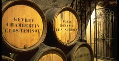 A full day guided and transported tour of the Côte de Beaune and the Côte de Nuits - Discover famous Burgundy wine