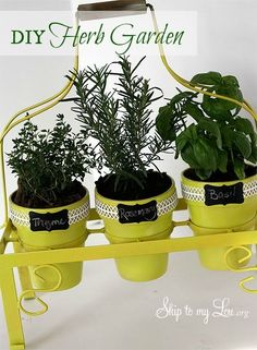 DIY Herb Garden | Skip To My Lou. See more at the photo