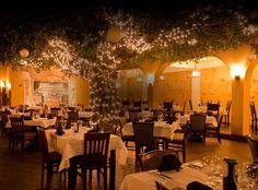 Firefly Casual Fine Dining Panama City Beach Fl Open Daily 5pm 535 Richard
