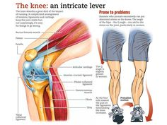 These are some of the best internal and topically applied home remedies for knee pain. Whether your pain is associated with arthritis or injury, let me introduce Facitis Plantar, Runners Knee Pain, Knee Pain Exercises, Sports Massage, Body Anatomy, Sports Medicine, Injury Prevention, Chronic Pain, Chronic Fatigue