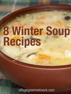 8 Winter Soup Recipes #winter #recipes #soup / http://villagegreennetwork.com/8-winter-soup-recipes