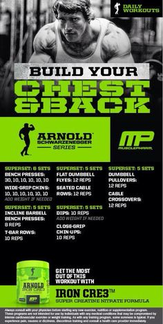 Arnold: Build your Chest & Back