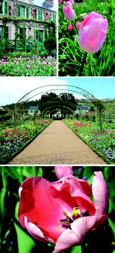 Giverny, France  Claude Monet's home & garden where most of his popular paintings were created