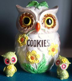 vintage cookie jars- There are over 50 types of Owl jars Owl Cookies, Cute Cookies, Cookies Et Biscuits, Owl Cookie Jars, Cookie Cutters, Love Vintage, Vintage Jars, Vintage Kitchen, Owl Kitchen