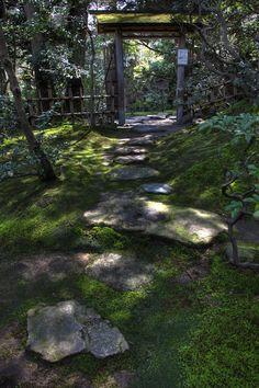 Kanazawa  Japan / Gyokusen-en (japanese-garden) kokeniwa  玉泉園(日本庭園) 苔庭