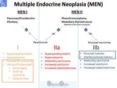 mnemonic multiple endocrine neoplasia