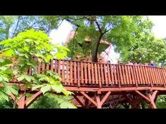 Sétálj ott, ahol a madarak járnak: 5 hazai lombkorona tanösvény, amit látnotok kell! | Családinet.hu Garden Bridge, Outdoor Structures