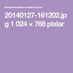 20140127-161202.jpg 1024 × 768 pixlar
