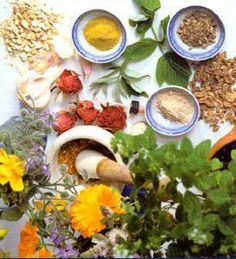 Ayurveda Herbs | Ayurvedic Herbal Treatment