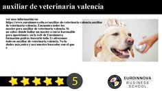 auxiliar de veterinaria valencia - ver mas información en: https://www.euroinnova.edu.es/auxiliar-de-veterinaria-valencia.    auxiliar de veterinaria valencia. Encuentra todos los master para auxiliar de veterinaria valencia. Si no sabes donde hallar un master o curso baremable para oposiciones. en la web de Euroinnova formación podrás buscarlo todo.    Te ofrecemos todo en auxiliar de veterinaria valencia. No lo dudes másentra y usa nuestro buscador con el que encontrarás cualquier curso o…