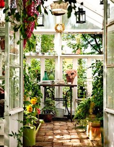 Self-made greenhouse from Oulu, Finland with lovely old sewing machine.