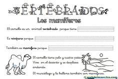 Animales-vertebrados