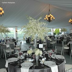 gray and pink wedding but add in the pink Uplighting!!
