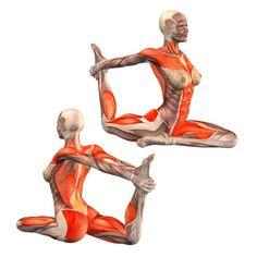 Pigeon pose with one-hand right leg grab - Ekohastapada Kapotasana right - Yoga Poses | YOGA.com