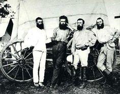 ☞ Bearded Bushrangers