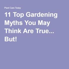 11 Top Gardening Myths You May Think Are True... But! -