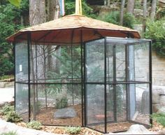 Aviary. This would be great on the north side of the house. I would build one strong enough to hook a hammock to so I could read or write while the birds sit on my legs :)