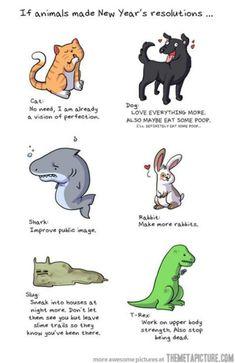 If animals made #NewYearsResolutions
