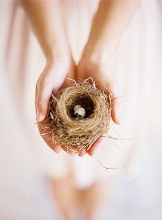 """""""a birds nest in hand"""" ZsaZsa Bellagio: charming Giving Hands, Spring Has Sprung, Hello Spring, Bird Feathers, Spring Time, Hold On, Just For You, In This Moment, Pretty"""
