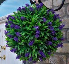 Inspirálódj és varázsold gyönyörűvé a kerted, nem lesz másra szükséged, csak néhány cserép virágra! - Finom ételek, olcsó receptek