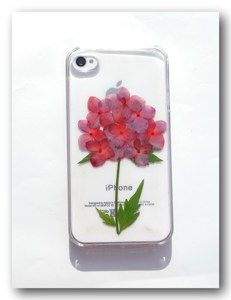 Real flower phone case, For iphone 4/4S, Pressed flower case (15)