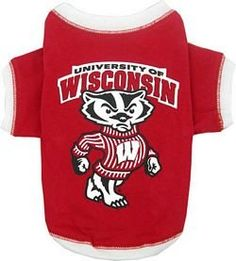 NCAA University of Wisconsin Pet T-Shirt, Large