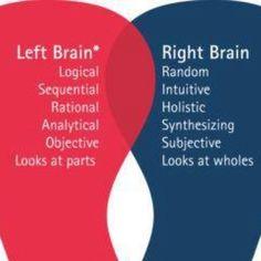Right brain / left brain