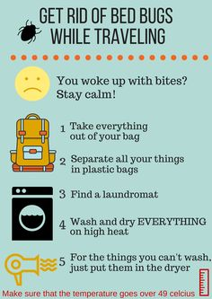 How to get rid of bed bugs naturally how to get rid of bed bugs how to get rid of the dreaded bed bugs while you are traveling act fast ccuart Gallery