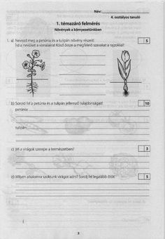 Apáczai- Környezet felmérő 4. o Biology, Sheet Music, Science, Education, Pdf, School, Places, Google, Dyslexia