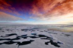 Artico, allarme scienziati: scioglimento ghiacciai e temperature record Lonely Planet, Bon Plan Voyage, Arctic Ice, Destinations, Destination Voyage, Sea And Ocean, Luxury Travel, Foto E Video, Places To See
