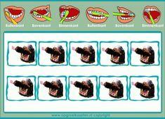 Zeven kleine beertjes gaan tandjes poetsen