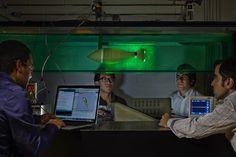 U.S. Navy is sponsoring fish robot project to help develop underwater vehicles