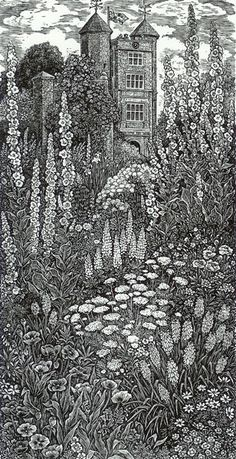 Cottage Garden, Sissinghurst, Wood engraving artist Sue Scullard is based in Kent, UK