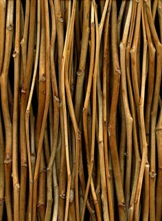 Twigs  #patterns and #textures