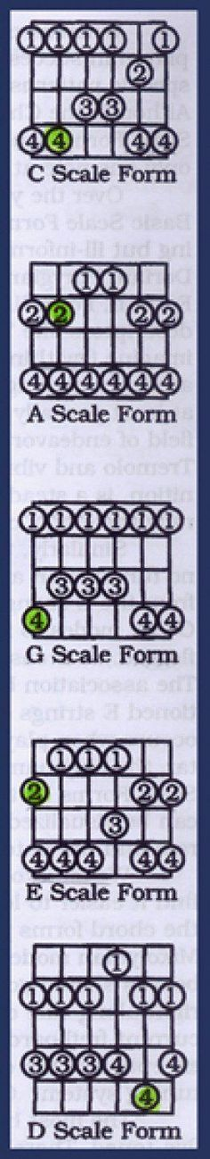 This Is A Guitar Fingerboard Diagram The Open Strings Are Shown On The