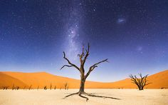 The night before returning to Windhoek, we spent several hours at Deadveli. The moon was bright enough to illuminate the sand dunes in the distance, but the skies were still dark enough to clearly see the Milky Way and Magellanic Clouds. Deadveli means 'dead marsh.' The camelthorn trees are believed to be about 900 years old but have not decomposed because the environment is so dry.