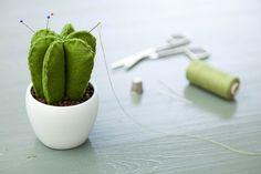 Kaktusový ihelníček