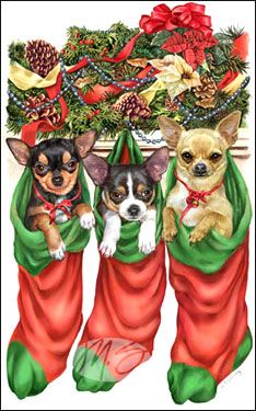 "New for 2007!   Chihuahua Christmas Cards are 8 1/2"" x 5 1/2"" and come in packages of 12 cards. One design per package. All designs include envelopes, your personal message, and choice of greeting. Select the greeting of your choice from the drop-down menu above. Add your personal message to the Comments box during checkout."