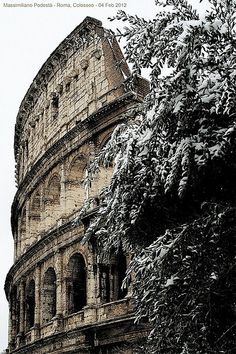 Snow at Colosseum