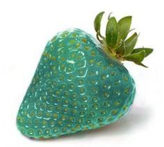 Aqua strawberry