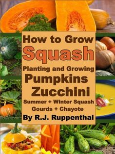 How to Grow Squash: Planting and Growing Pumpkins, Zucchini, Summer and Winter Squash, Gourds, and Chayote by R.J. Ruppenthal, http://www.amazon.com/dp/B00ATL77GK/ref=cm_sw_r_pi_dp_YzTfrb02PVB16