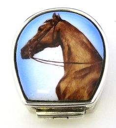 Continental Sterling Silver and Enamel Pill Box Horse Picture ARI D Norman