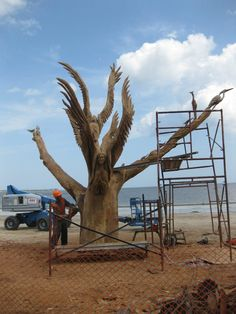 Save the Oaks ... Post Katrina, someone has decided to get creative with the oak trees ... beautifully carved!