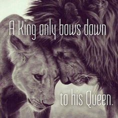 Ascendo Tuum Quotes On Wife, Bow Quotes, Quotes Girls, Sassy Quotes, King Queen Quotes, Lion King Quotes, Quotes On Relationships, Relationship Quotes, Lioness Quotes