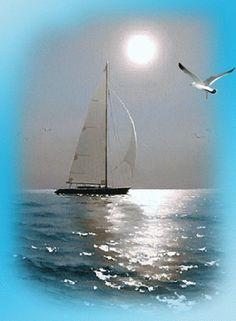 Beautiful image of boat & bird under the moon gif Foto Gif, Gif Photo, Beautiful Gif, Beautiful Pictures, Good Morning Gif, Gif Pictures, Belle Photo, Sailing Ships, Waterfall