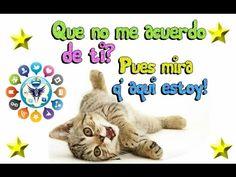 Gracias por tu Apoyo: http://youtu.be/MUDOn7ceW6s vía @YouTube Mensajes #BuenosDeseos siempre con #cariño y agradecimiento de #amistad para todos